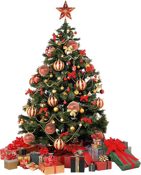 christmas-tree-feature