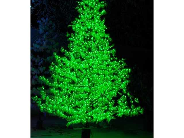 LED Cypress Christmas Tree-630004